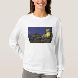 Europe, Italy, Florence, Architectural detail; T-Shirt