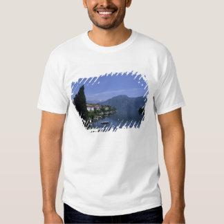 Europe, Italy, Lake Como, Tremezzo. Northern Shirt