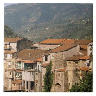 Europe, Italy, Liguria, Riviera di Ponente, Tile