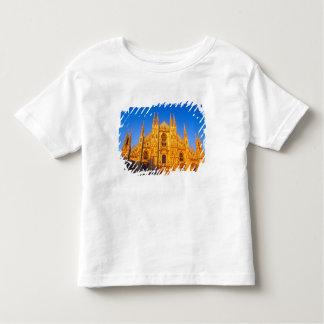 Europe, Italy, Milan, Cathedral of Milan Toddler T-Shirt