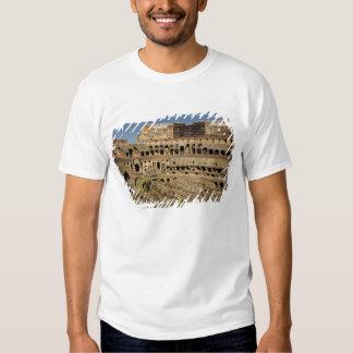 Europe, Italy, Rome. The Colosseum (aka T Shirt