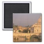 Europe, Italy, Rome, The Vatican. Basilica San Refrigerator Magnet