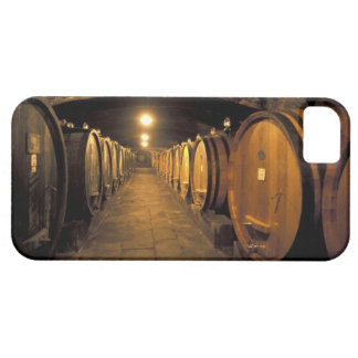 Europe, Italy, Toscana region. Chianti cellars Barely There iPhone 5 Case