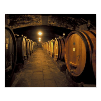 Europe, Italy, Toscana region. Chianti cellars Poster