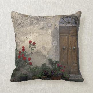 Europe, Italy, Tuscany, Chianti, Tuscan doorway Cushion