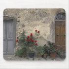 Europe, Italy, Tuscany, Chianti, Tuscan doorway; Mouse Mat