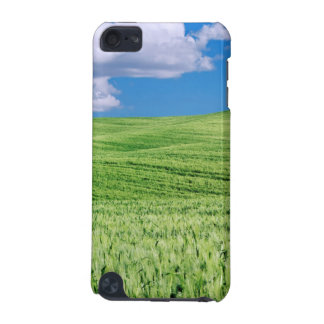 Europe, Italy, Tuscany. Landscape Of Wheat iPod Touch (5th Generation) Covers
