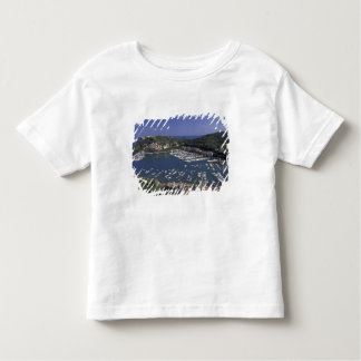 Europe, Italy, Tuscany, Porto Ercole, View of Toddler T-Shirt