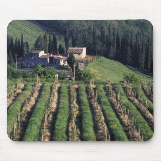 Europe, Italy, Tuscany. Scenic villa cyprus. Mouse Pad