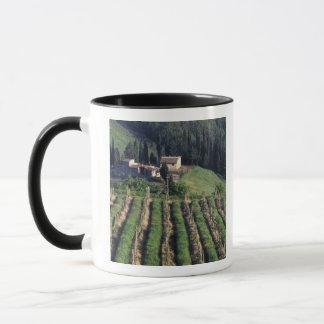 Europe, Italy, Tuscany. Scenic villa cyprus. Mug