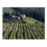 Europe, Italy, Tuscany. Scenic villa cyprus. Post Card