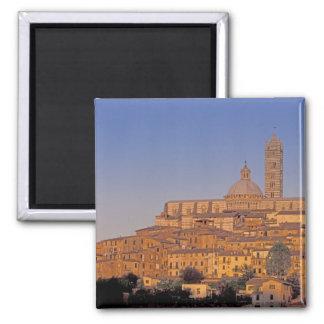 Europe, Italy, Tuscany, Siena. 13th century 3 Square Magnet