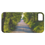 Europe, Italy, Tuscany, tree lined road iPhone 5 Cover