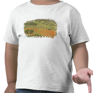 Europe Italy Tuscany Val D Orcia Monte Tee Shirt