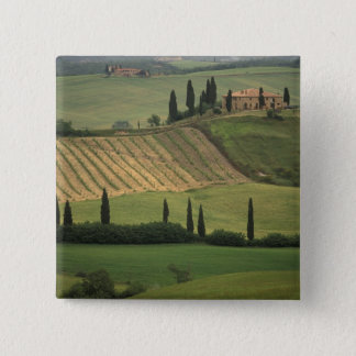 Europe, Italy, Tuscany, Val d' Orcia, Tuscan 15 Cm Square Badge