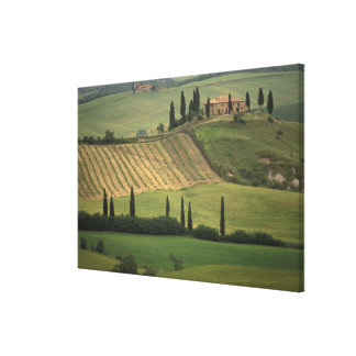 Europe, Italy, Tuscany, Val d' Orcia, Tuscan Canvas Print