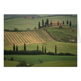 Europe, Italy, Tuscany, Val d' Orcia, Tuscan Card