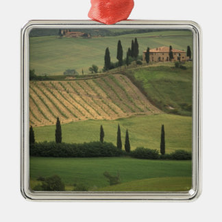 Europe, Italy, Tuscany, Val d' Orcia, Tuscan Christmas Ornament
