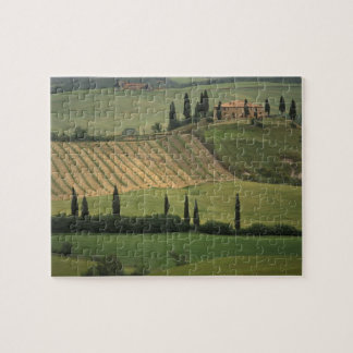 Europe, Italy, Tuscany, Val d' Orcia, Tuscan Jigsaw Puzzle