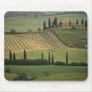Europe, Italy, Tuscany, Val d' Orcia, Tuscan Mouse Mat