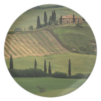 Europe, Italy, Tuscany, Val d' Orcia, Tuscan Plate