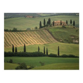 Europe, Italy, Tuscany, Val d' Orcia, Tuscan Postcard