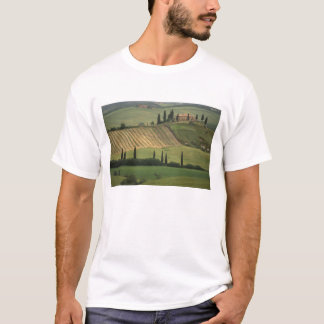 Europe, Italy, Tuscany, Val d' Orcia, Tuscan T-Shirt