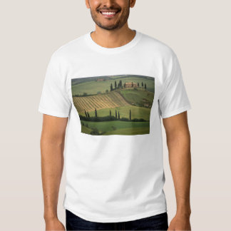 Europe, Italy, Tuscany, Val d' Orcia, Tuscan T Shirts