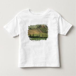 Europe, Italy, Tuscany, Val d' Orcia, Tuscan Toddler T-Shirt