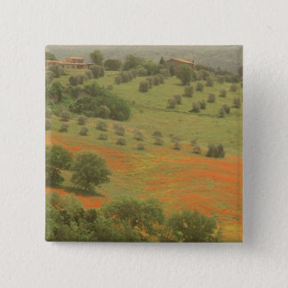 Europe, Italy, Tuscany, Val D'Orcia, Monte 15 Cm Square Badge