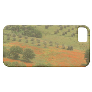Europe, Italy, Tuscany, Val D'Orcia, Monte Barely There iPhone 5 Case