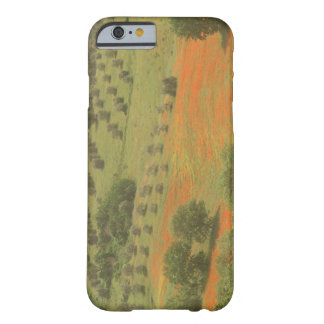 Europe, Italy, Tuscany, Val D'Orcia, Monte Barely There iPhone 6 Case
