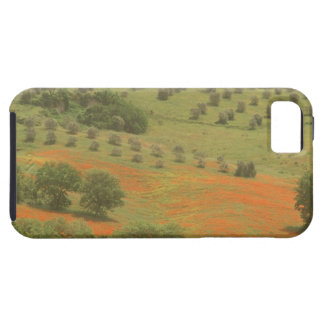 Europe, Italy, Tuscany, Val D'Orcia, Monte iPhone 5 Covers