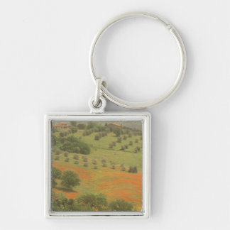 Europe, Italy, Tuscany, Val D'Orcia, Monte Key Ring