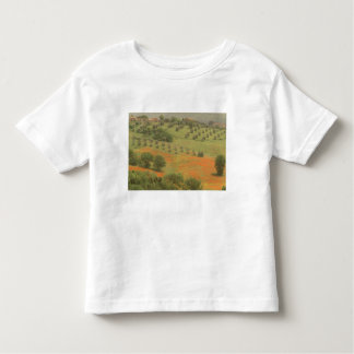 Europe, Italy, Tuscany, Val D'Orcia, Monte Toddler T-Shirt