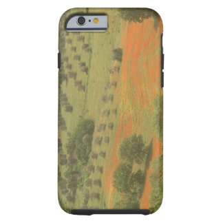 Europe, Italy, Tuscany, Val D'Orcia, Monte Tough iPhone 6 Case