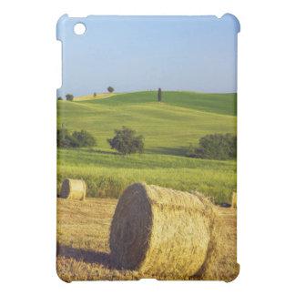 Europe, Italy, Tuscany, Val d'Orcia, Pienza - iPad Mini Cover