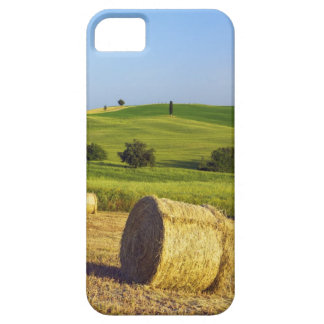 Europe, Italy, Tuscany, Val d'Orcia, Pienza - iPhone 5 Covers