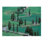 Europe, Italy, Tuscany. Winding road near Post Card