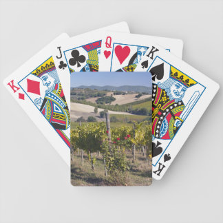 Europe, Italy, Umbria, near Montefalco, Vineyard Bicycle Playing Cards