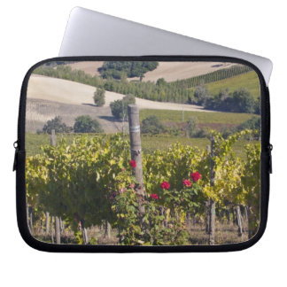 Europe, Italy, Umbria, near Montefalco, Vineyard Laptop Sleeve