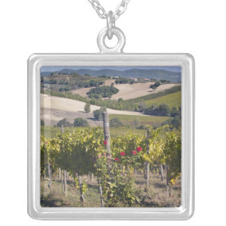 Europe, Italy, Umbria, near Montefalco, Vineyard Silver Plated Necklace