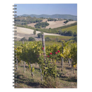 Europe, Italy, Umbria, near Montefalco, Vineyard Spiral Notebook