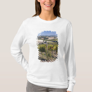 Europe, Italy, Umbria, near Montefalco, Vineyard T-Shirt
