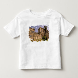 Europe, Middle East, Istanbul. The Bosphorus, Toddler T-Shirt