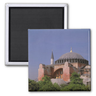 Europe, Middle East, Turkey, Istanbul. Aya Magnet