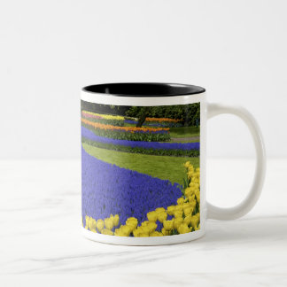 Europe, Netherlands, Holland, Lisse, Keukenhof Two-Tone Coffee Mug