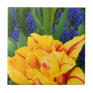 Europe, Netherlands, Lisse. Tulips Tile