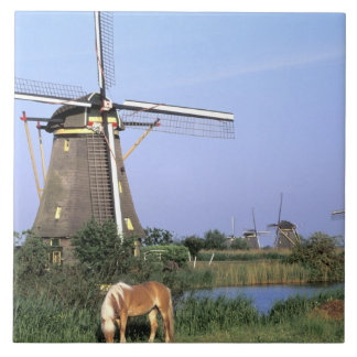 Europe, Netherlands, Zuid Holland, Kinderdijk. 2 Tile