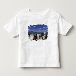 Europe, Slovakia, East Slovakia, Spis Region, Toddler T-Shirt